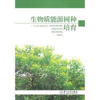 【二手旧书8成新】生物质能源树种培育 李宝银,周俊新 9787561535943