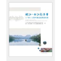 珠江―西江经济带(广西)三周年建设成果宣传册