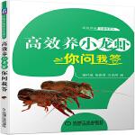 高效养小龙虾你问我答
