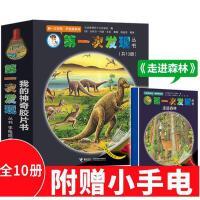第一次发现丛书手电筒系列全10册 我的神奇胶片书 走进森林 小学推荐阅读 动物自然太空生活人体史前生物恐龙绘本儿童科普