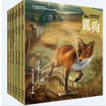 黑鹤动物小说儿童彩绘拼音版(全6册)