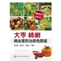 果树病虫害防治丛书--大枣柿树病虫害防治原色图鉴