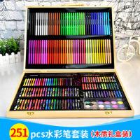 木盒装251pcs画笔水彩笔套装学生绘画工具大礼盒美术文具六一开学学生礼物礼品