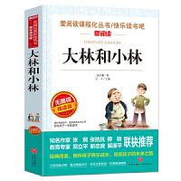 大林和小林/导读版新课标必读丛书课外阅读青少版(无障碍阅读 彩插本)