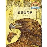 沈石溪激情动物小说雄鹰金闪子