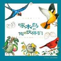 【旧书二手9成新】听大自然讲故事:啄木鸟和他的伙伴们 黛安彭斯、梅尔博林、克里斯汀孔普蒂比茨/著 长江少年儿童出版社
