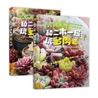 【二手旧书8成新】《和二木一起玩多肉II》 (上、下(新浪多肉植物种植达人二木新作1亿人次阅读验证 二木 978751