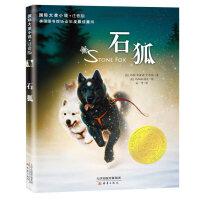 国际大奖小说・注音版--石狐