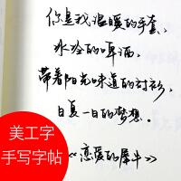 大学生美工钢笔手写体字帖练字本 行书行草书法硬笔成人临摹神器