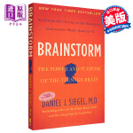 【中商原版】头脑风暴[英文原版]Brainstorm: The Power and Purpose of the Te