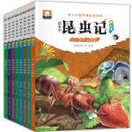 法布尔昆虫记注音版全套8册 新小牛顿科普启蒙绘本 一年级课外书儿童绘本 1-3年级小学生阅读书籍少儿文学读物6-12岁