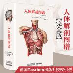 【官方.原版】【北京美术出版社官方.正品 全新塑封当天发货】人体解剖图谱 Altas of Human Anatomy