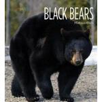 预订 Black Bears [ISBN:9781628325614]