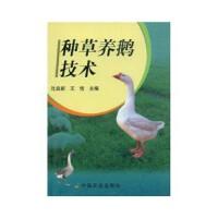 【二手旧书九成新】 种草养鹅技术