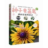 种子变盆栽:缤纷花草养成记 自在 9787517022299