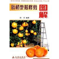 [旧书二手9成新]脐橙整形修剪图解 陈杰著 金盾出版社 9787508234281