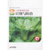 叶类蔬菜病虫害识别与防治/新农村新生活书库