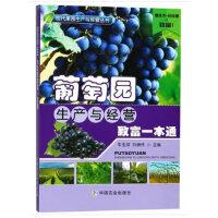 葡萄园生产与经营致富一本通