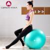 杰朴森加厚防爆瑜伽球55cm孕妇球健身球减肥球磨砂瑜珈球
