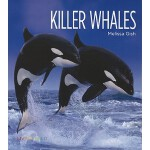 预订 Living Wild: Killer Whales [ISBN:9780898125542]