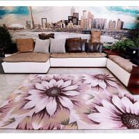 艾虎高毛印花客厅沙发卧室简约弯头纱地毯客厅 茶几防滑特价地毯
