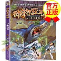 【官方正版】动物变形侠 功夫白鲨