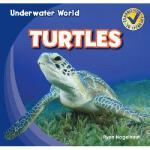 【预订】Turtles9781433985799