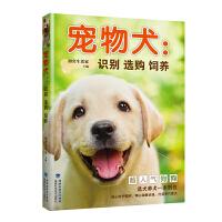宠物犬:识别 选购 饲养