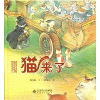 北京记忆・皇城童话《猫来了》
