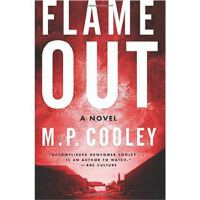 Flame Out: A Novel