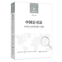中国公司法(中国公司法的问题与出路)