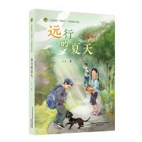 好孩子中国原创书系-远行的夏天JYY三三 春风文艺出版社 9787531358138
