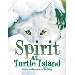 预订 Spirit at Turtle Island [ISBN:9781524621599]