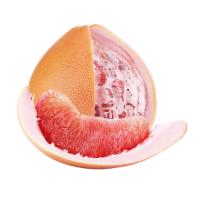 【包邮】福建平和�g溪蜜柚三红蜜柚新鲜当季水果2个装净重4.3到4.6斤