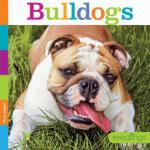 预订 Bulldogs [ISBN:9781628322477]