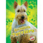 【预订】Scottish Terriers