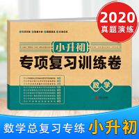 小升初数学六年级下册数学专项复习训练卷人教版2020版