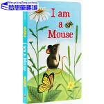 英文原版绘本 I am a Mouse 我是一只老鼠 I am a Bunny同系列 早教启蒙纸板书 睡前晚安故事书