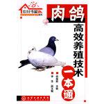 农村书屋系列--肉鸽高效养殖技术一本通