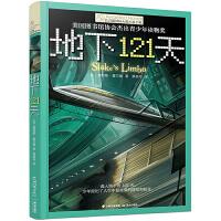 新版・长青藤国际大奖小说书系・第2辑:地下121天