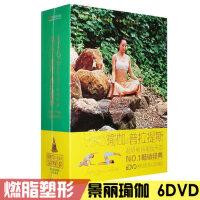 正版景丽瑜伽普拉提斯基础入门燃脂塑形瑜伽视频教学DVD光盘碟片