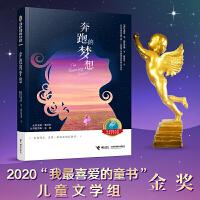 接力国际大奖儿童文学书系:奔跑的梦想