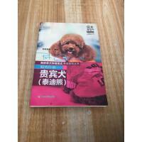 【二手9成新】爱宠嘉年华系列丛书:聪明伶俐・贵宾犬(泰迪熊)