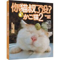 【二手旧书8成新】你猫叔了没? 2 白猫 9787538556896