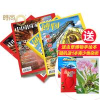 中国国家地理+博物组合2018年全年杂志订阅新刊预订4月起订