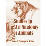 预订 Studies in the Art Anatomy of Animals [ISBN:978141010663