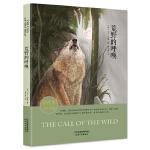 荒野的呼唤全译本 名家名译插图版 中小学名著阅读推荐 外国名著典藏