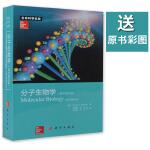 【送原书彩图】分子生物学(原书第五版)第5版 生命科学名著Robert F. Weaver著 978703036853