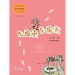 向南走,向南走(中国当代实力派儿童文学作家精品书系第二辑)