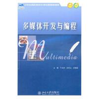 【二手旧书8成新】多媒体开发与编程 于永彦 等 9787301185148